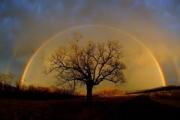 Предсказване на времето по знаците на природата